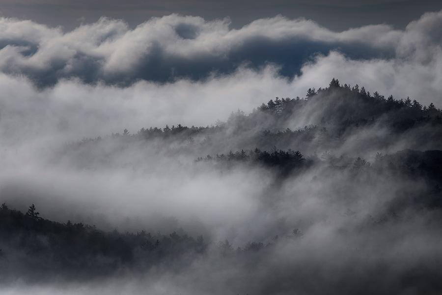 fog, Quabbin Reservoir, Massachusetts, Patrick Zephyr, sunrise, dawn, trees, blanket