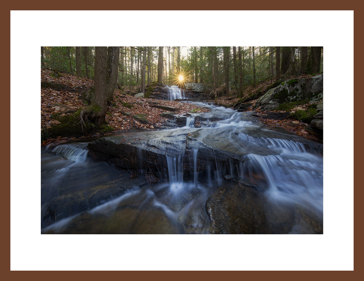 MATTED AND FRAMED PRINT - CHERRY FRAME print preview