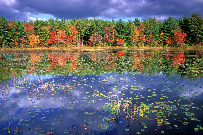 Wendell, Massachusetts, ruggles pond, autumn, photo