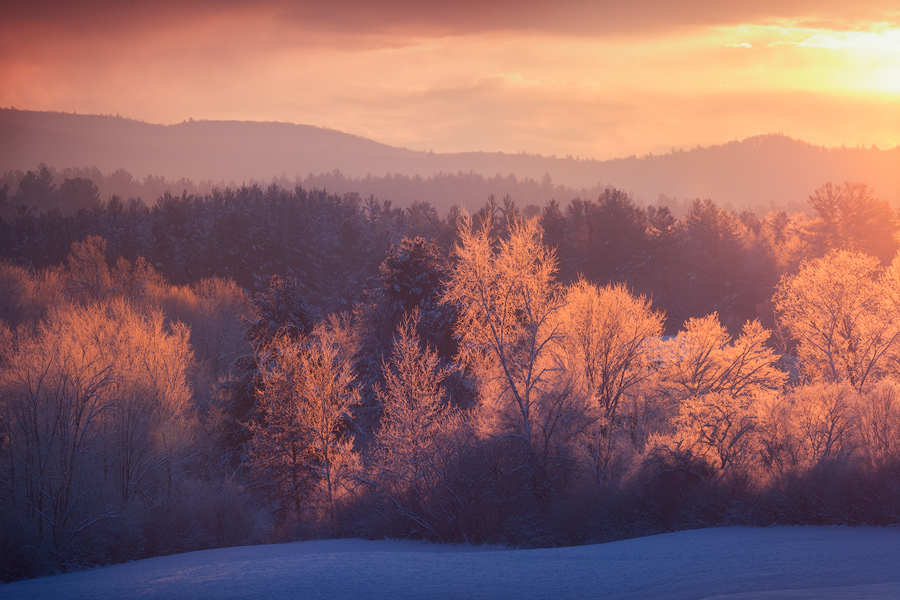 sunrise, dawn, amherst, Massachusetts, winter, forest, trees, Patrick Zephyr, photo