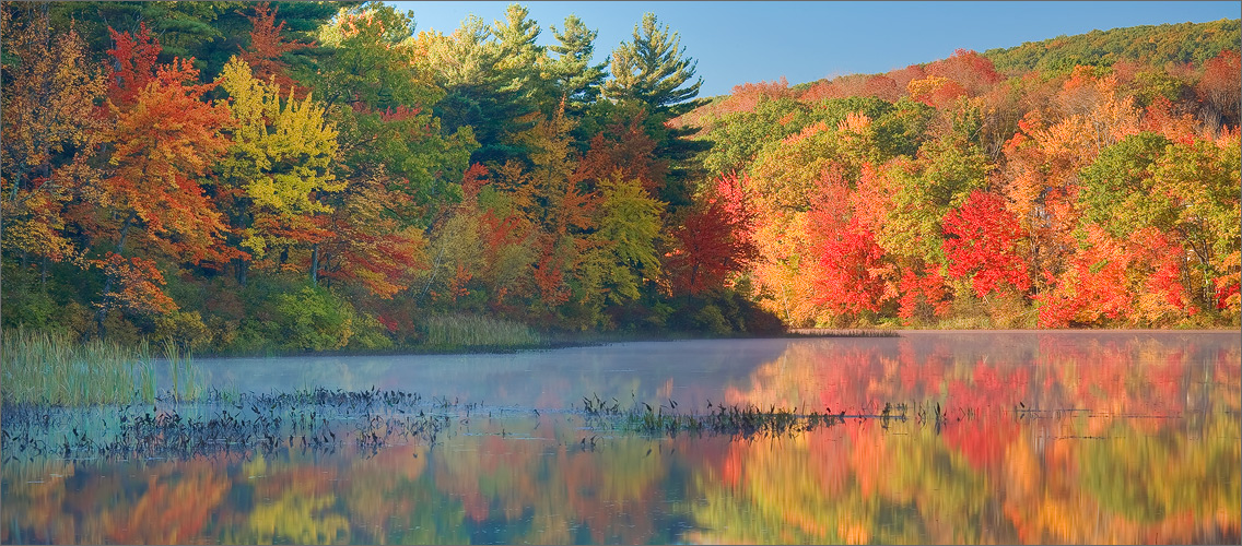Autumn, reflection, fog, dawn, Massachusetts,