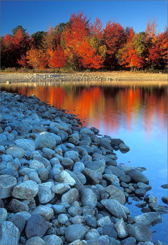 Quabbin reservoir, Massachusetts, autumn, red maple, rocks, photo