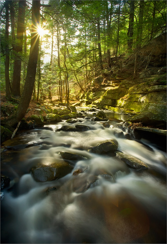 Buffam brook, Pelham, Massachusetts, sun rays, forest, photo
