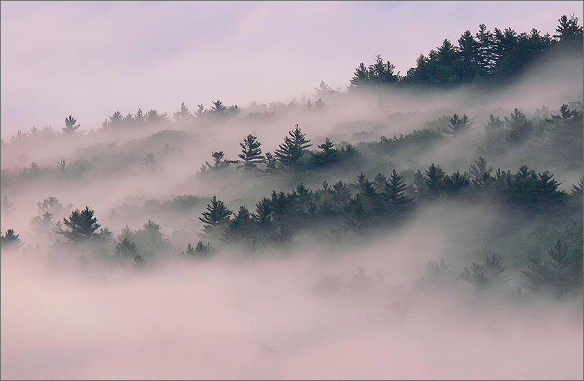 Quabbin Reservoir, fog, forest, sunrise, photo