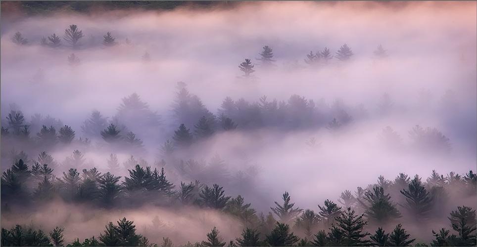 Fog, quabbin reservoir, Massachusetts, pink, sunrise, photo