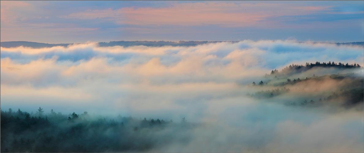 Quabbin reservoir, Massachusetts, fog, sunrise, trees