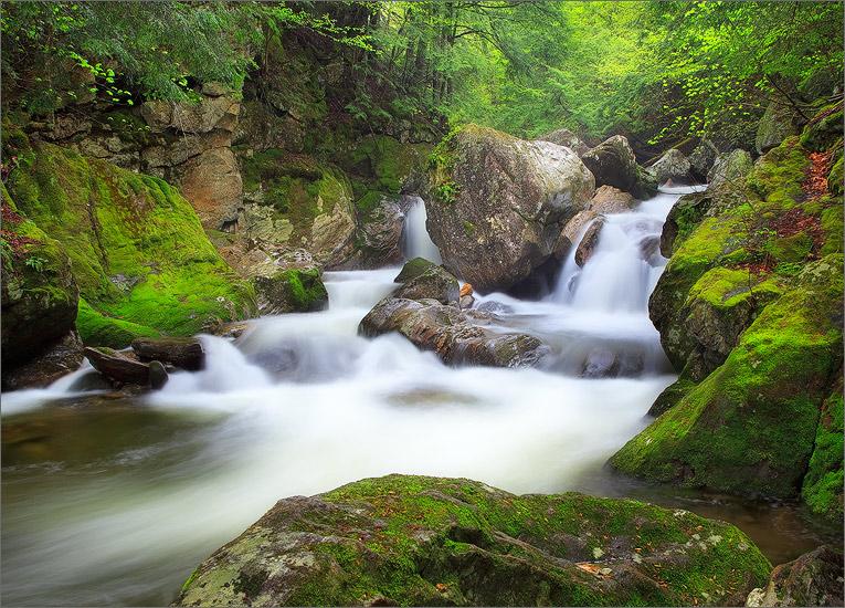 Dunbar brook, moss, Monroe state forest, Massachusetts, waterfall, photo