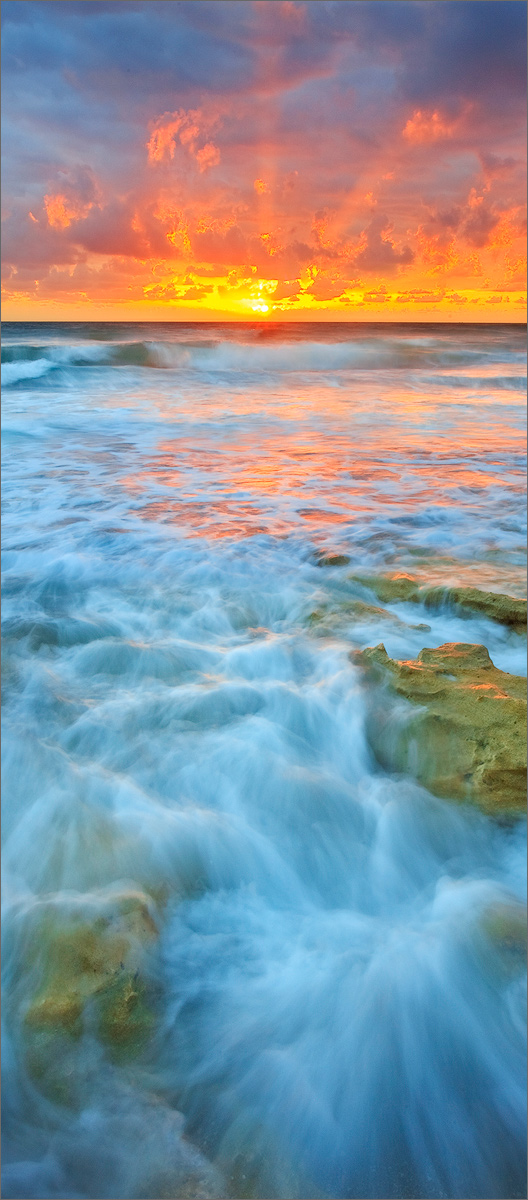 Florida, ocean, sunrise, coral cove,, photo