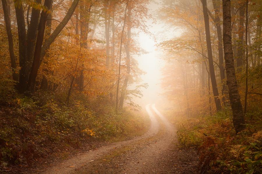 Quabbin Reservoir, Massachusetts, fog, trail, road, autumn, Patrick Zephyr, New England, autumn foliage, photo