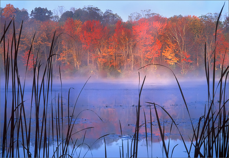 Connecticut, pond, autumn, sunrise, photo