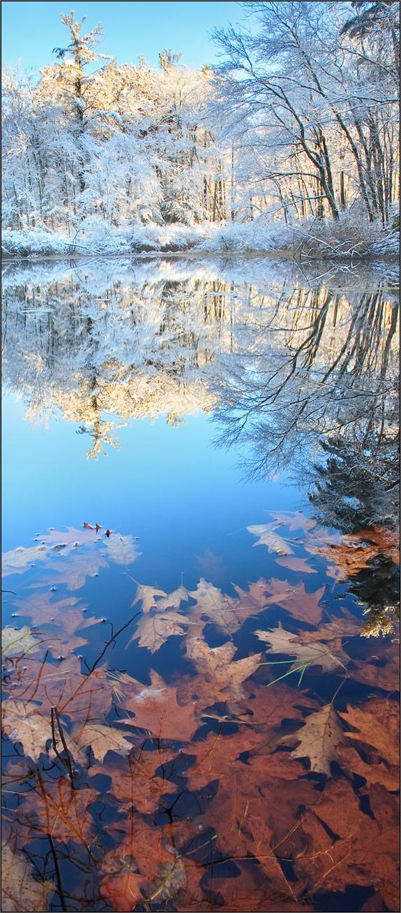 Winter, reflection, snow, Pelham, Massachusetts,