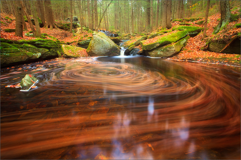 I have visited this stream many times and always find a different surprise waiting for me. My camera was set up just about the...