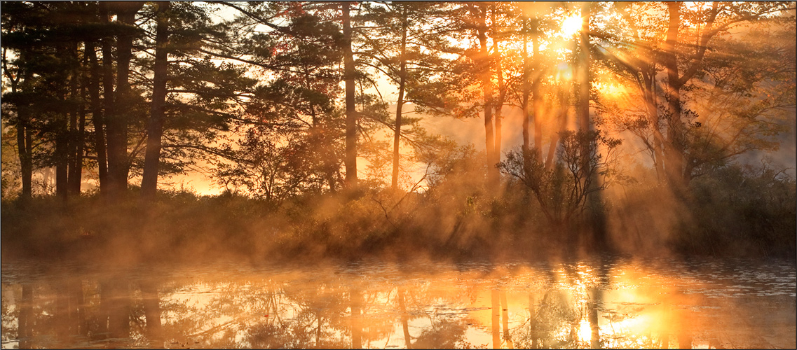 Harvard pond, petersham, Massachusetts, island, sunrise, sun rays, photo