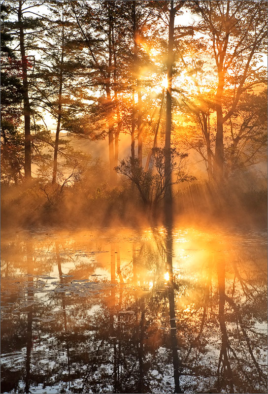Harvard pond, petersham, Massachusetts, sunrise, fog, orange, island