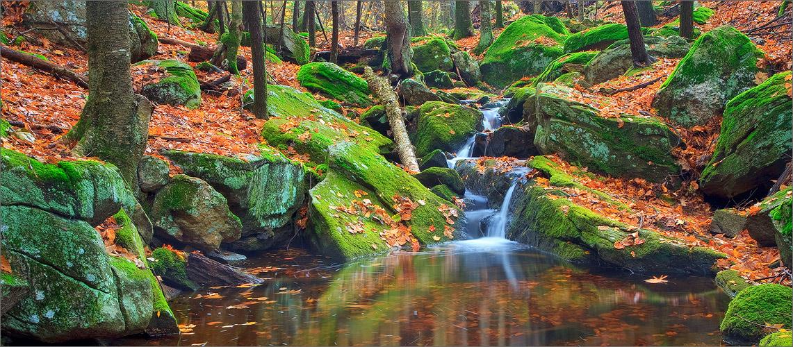 Holland Glenn, belchertown, Massachusetts, stream, moss