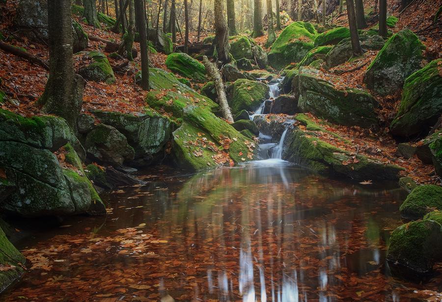 Holland Glenn, belchertown, Massachusetts, cascade, waterfall