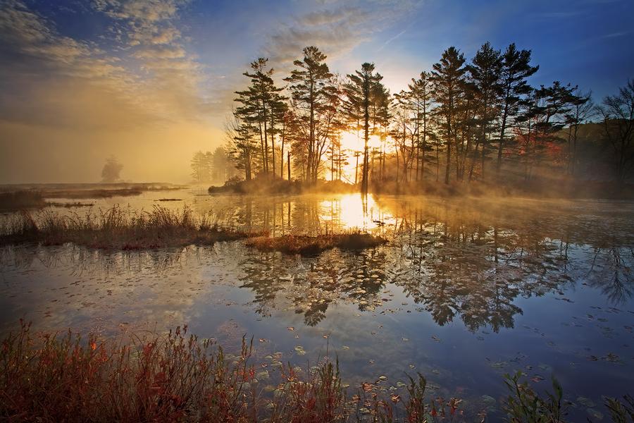 Harvard Pond, sunrise, massachusetts, island, photo