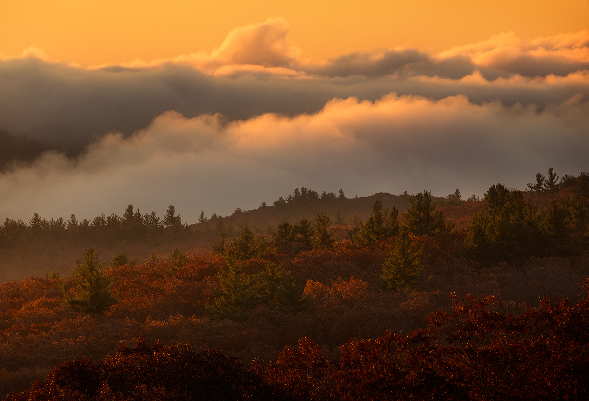 fog, autumn, foliage, sunrise, dawn, massachusetts, pelham, patrickzephyr, photo