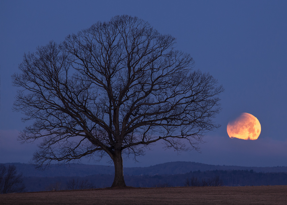 A different composition that provides a better view of the beginning stage of the lunar eclipse. The total lunar eclipse was...