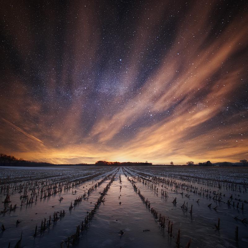 milky way, stars, hadley, Massachusetts, night, cornfield,