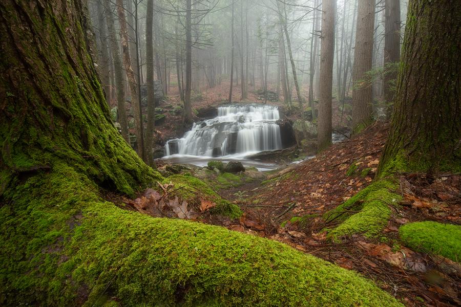 moss, waterfall, cascade, forest, New England, Massachusetts, Patrick Zephyr, green, photo