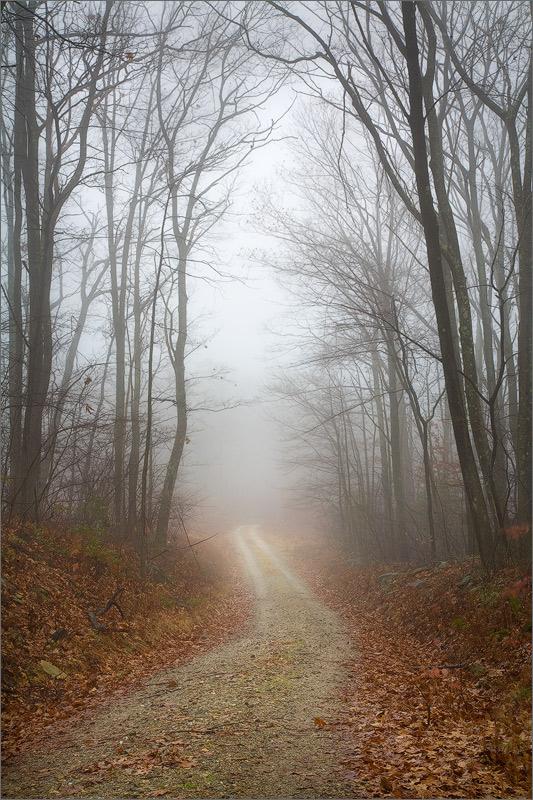 Road, november, quabbin reservoir, Massachusetts, trail