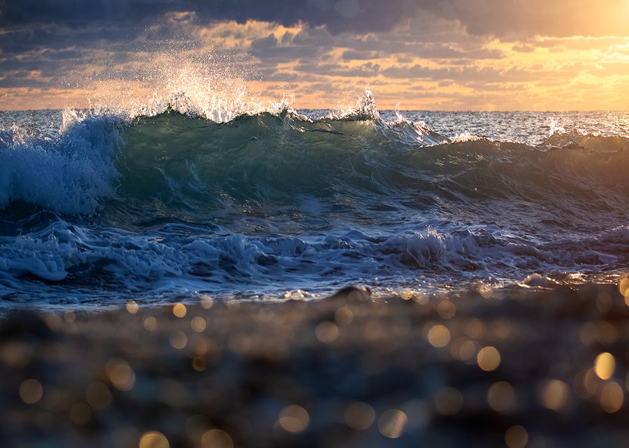 Something different- a capture from this past winter on the coast of Florida. My daughter Sky loves the ocean and waves and she...