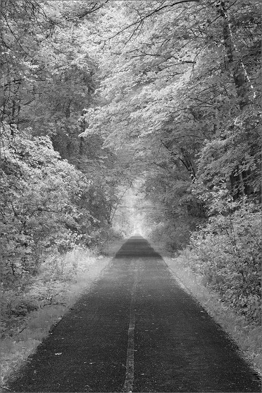 Rail trail, Hadley, Massachusetts,, photo