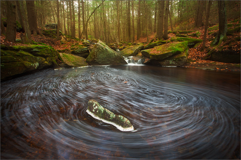 Another from this stream close to my home. I've been visiting and photographing this location for years and I'm always surprised...