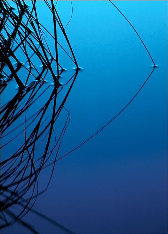 Water, blue, reflection, tension