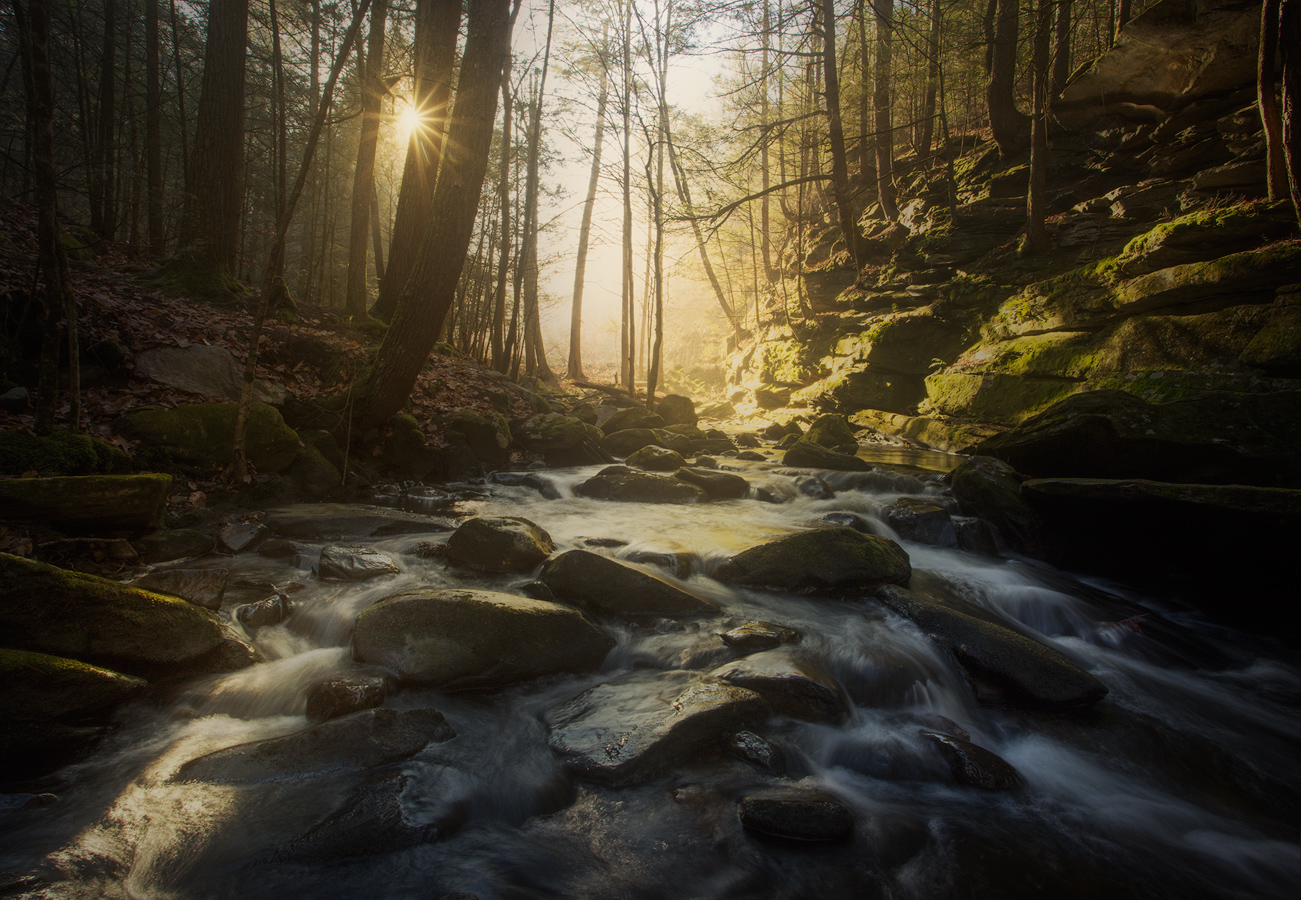cascade, waterfall, forest, stream, dawn. sunrise, Pelham, Massachusetts, fog, Patrick Zephyr, Buffam Falls, photo