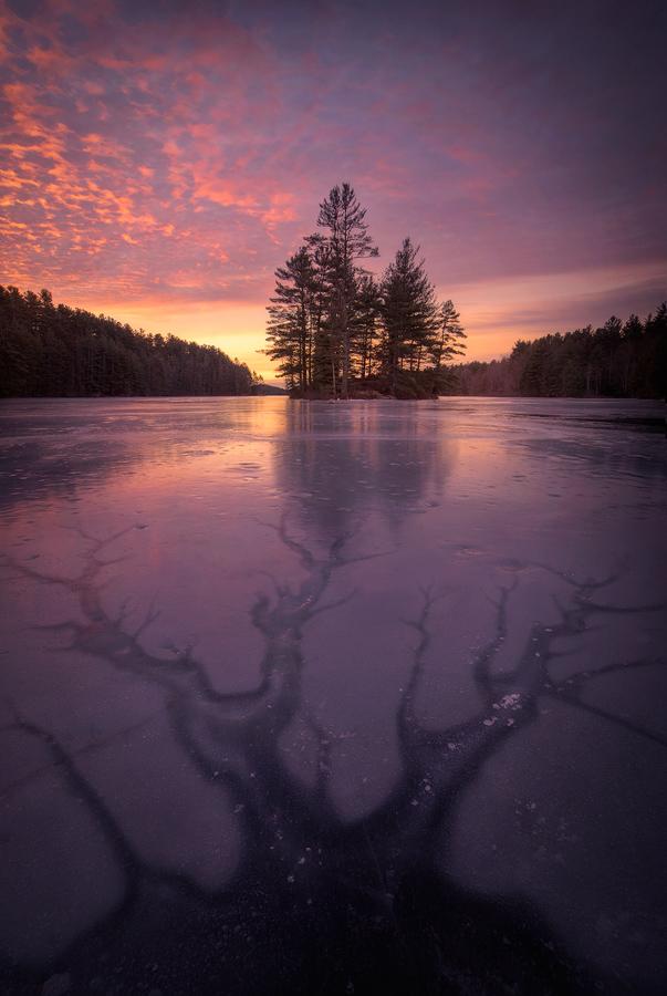 winter, ice, Quabbin Reservoir, Massachusetts, nature photography, landscape, trees photography, island, Patrick Zephyr, photo