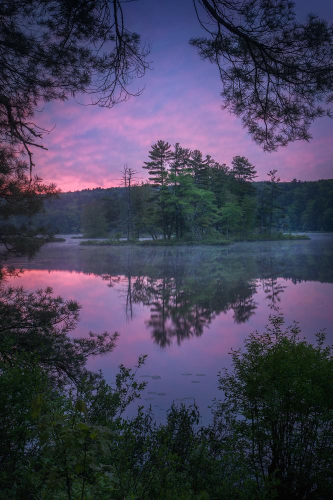 dawn, sunrise, harvard pond, Massachusetts, island, petersham, patrick zephyr, violet