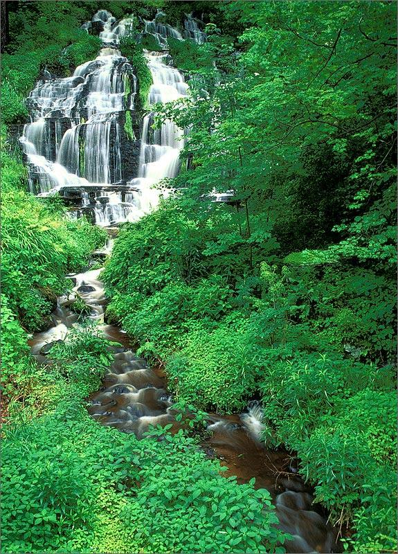 Waterfall, Massachusetts, Sunderland, whitmore falls