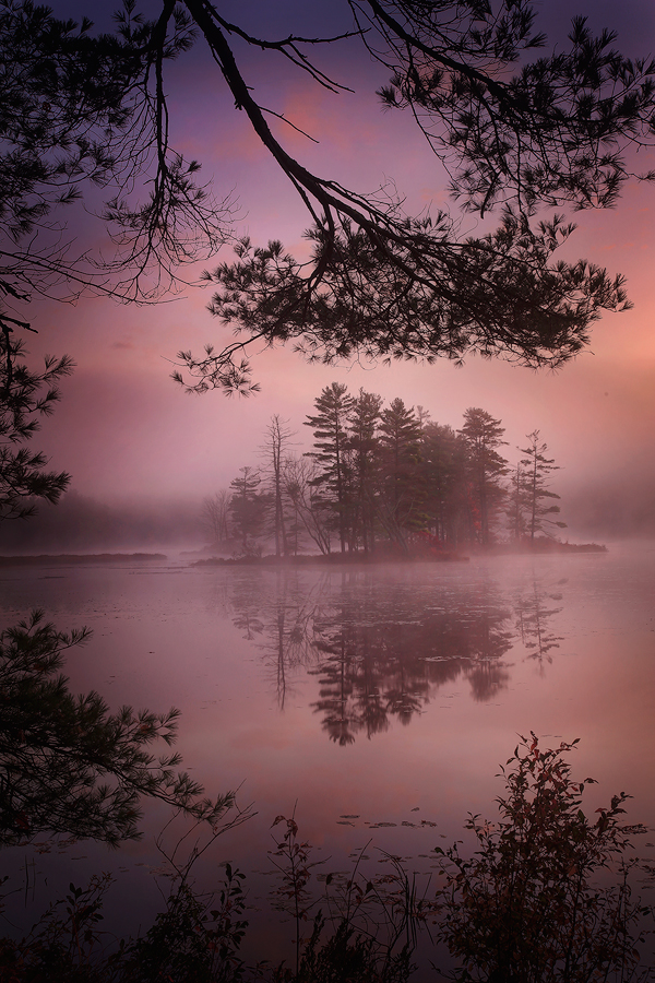 fog, island, harvard pond, petersham, Massachusetts, lake, sunrise, dawn, photo
