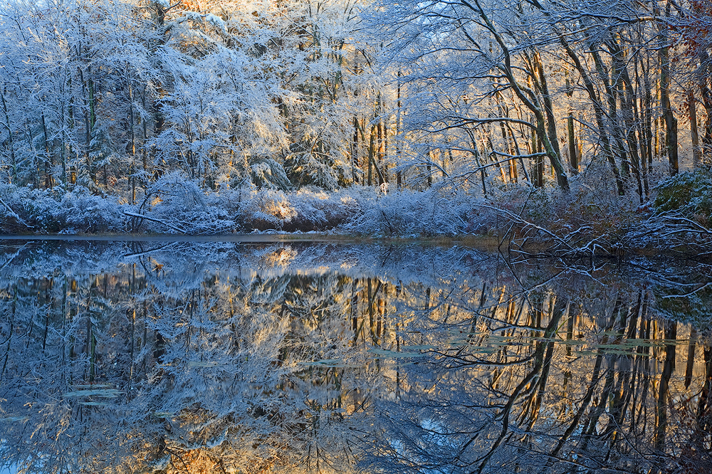 Pelham, winter, snow, reflection, Massachusetts,